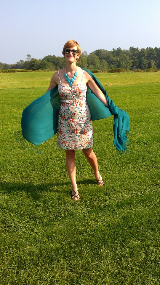 dress plenty by tracy reese gift pashmina llbean shoes costume